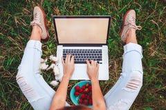 Jeune femme ordinateur portable de utilisation et de dactylographie dans l'herbe d'été Indépendant travaillant en parc extérieur Image libre de droits