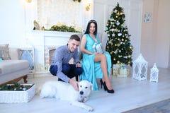 Jeune femme portant la robe bleue et l'homme s'asseyant près de la cheminée et l'arbre de Christas, chien se trouvant sur le plan images stock