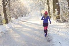Jeune femme pulsant en hiver images stock