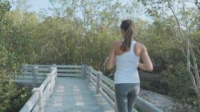 Jeune femme pulsant sur le chemin forestier de palétuviers Tir de Steadicam, vue arrière banque de vidéos