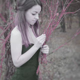 Jeune femme sensuelle en harmonie en bois avec la nature Images libres de droits