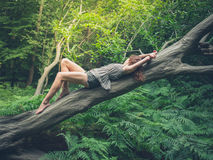 Jeune femme sensuelle sur l'arbre tombé dans la forêt Photos stock