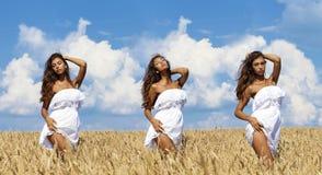 Jeune femme sexy dans un domaine d'or de blé photos libres de droits
