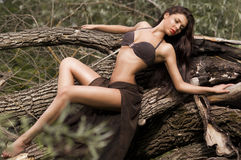 Jeune femme sexy dans un maillot de bain Images libres de droits