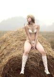 Jeune femme sexy parmi la paille. Image libre de droits