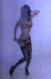 Jeune femme sexy sous la pluie Photographie stock libre de droits