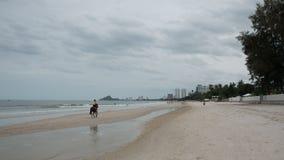 Jeune femme sur le cheval d'équitation de plage image libre de droits