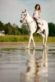 Jeune femme sur un cheval Cavalier de horseback, cheval d'équitation de femme sur b images libres de droits