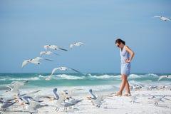 Jeune femme sur une plage où voler de mouettes Images stock