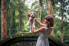 Jeune femme tenant son chien de briquet de chiot en nature d'île tropicale de Bali, Indonésie Photographie stock