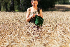 Jeune femme tricotant sur le champ de blé Photographie stock
