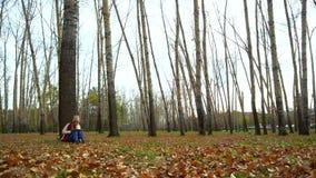 Jeune fille attirante en parc d'automne sous un arbre, se reposant au sol, fonctionnant dans un ordinateur portable banque de vidéos
