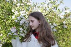Jeune fille avec de longs cheveux dans un chandail blanc dans un jardin de floraison de pomme au printemps photo stock