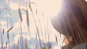 Jeune fille avec de longs cheveux foncés se tenant sur un champ vert banque de vidéos