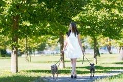 Jeune fille avec deux lévriers en parc Photographie stock libre de droits