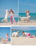 Jeune fille avec son chien par le bord de la mer Images libres de droits