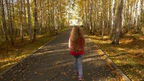 Jeune fille blonde marchant par l'allée d'automne en parc L'appareil-photo suivent au tir de chariot de fille banque de vidéos