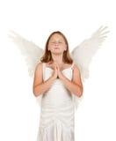 Jeune fille d'ange priant sur le blanc images stock