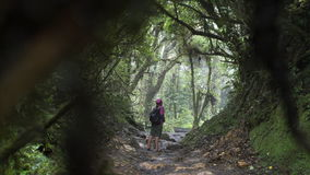 Jeune fille dans la jungle