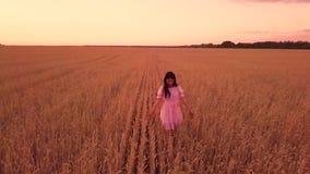 Jeune fille dans le domaine de blé banque de vidéos
