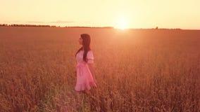 Jeune fille dans le domaine de blé clips vidéos