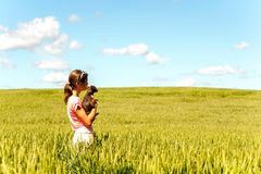 Jeune fille dans le domaine de blé tenant le chien contemplant la nature Images libres de droits