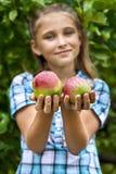 Jeune fille dans un champ de pommiers Image stock