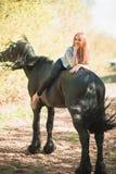 Jeune fille de cavalier avec de longs cheveux se trouvant sur le cou de cheval Photos stock