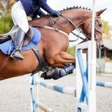 Jeune fille de cavalier sautant par-dessus barier sur son cours Photo stock