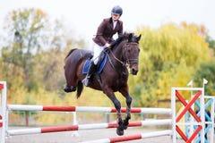 Jeune fille de cavalier sur le cheval de baie sautant par-dessus la barrière Photographie stock