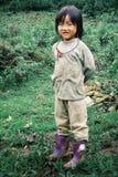 jeune fille de hmong de membre local mignon de tribu à côté de leur champ de ferme de famille images libres de droits