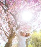Jeune fille de printemps sautant avant cerisier photo stock