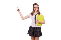 Jeune fille diligente d'étudiant avec des carnets Photographie stock