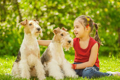 Jeune fille et deux terriers de renard Images libres de droits