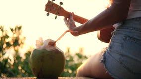 Jeune fille hippie jouant la guitare d'ukulélé au beau coucher du soleil tropical de plage 4K thailand clips vidéos