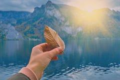 Jeune fille hollding la feuille pâle fanée dans sa main dans la lumière lumineuse du beau soleil scénique de lever de soleil au-d photographie stock