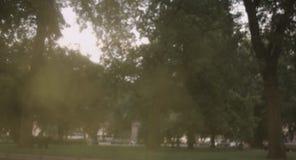 Jeune fille jetant la poudre de Holi en parc clips vidéos