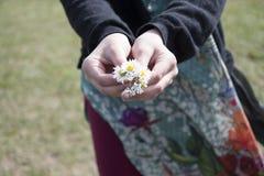 Jeune fille tenant le plan rapproché de fleurs blanches Photo libre de droits