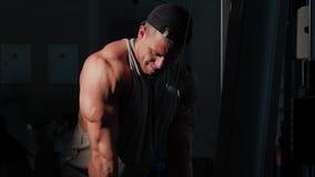 Jeune formation de bodybuilder dans un gymnase banque de vidéos