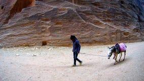 Jeune garçon arabe avec la ville antique de donkycanyon de PETRA en Jordanie Images stock