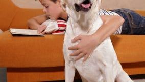 Jeune garçon choyant son chien et lecture de Labrador banque de vidéos