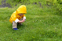 Jeune garçon dans l'imperméable Photo stock