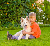 Jeune garçon et chiot suisse blanc du ` s de berger Image stock