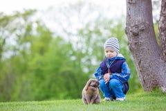 Jeune garçon jouant avec le lapin d'animal familier en parc Image stock