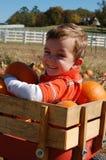 Jeune garçon jouant dans le chariot complètement des potirons Photos stock