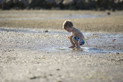 Jeune garçon jouant en eau peu profonde image stock