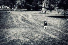 Jeune garçon marchant en parc tenant une fleur de pissenlit - noircissez a Images stock