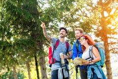 Jeune groupe de randonneurs Image stock