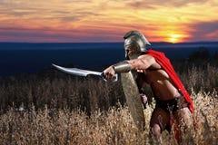 Jeune guerrier spartiate courageux posant dans le domaine Image stock