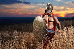 Jeune guerrier spartiate courageux posant dans le domaine Photographie stock libre de droits